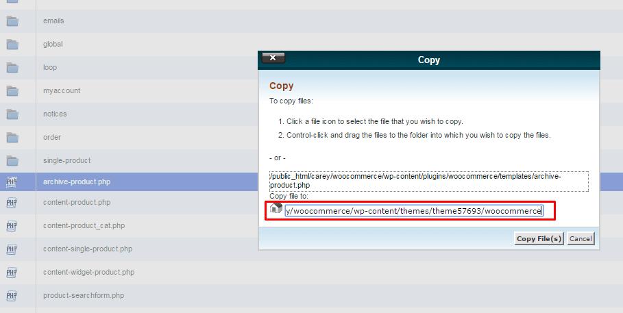 بانویسی فایل های قالب ووکامرس